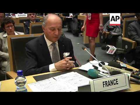 French FM at AU summit, comments on aid for Mali, military operation