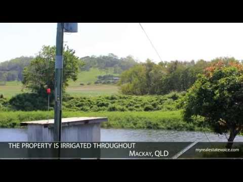 Coastal Sugar Cane Farm + Multiple Residences Property for Sale - Mackay, QLD