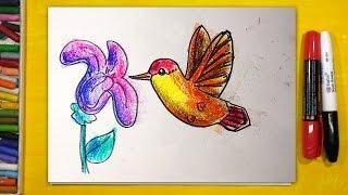 Как нарисовать КОЛИБРИ, Урок рисования для детей от 3 лет | Раскраска для детей