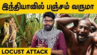 Vizhithiru | Dude Vicky | IBC Tamil Tv