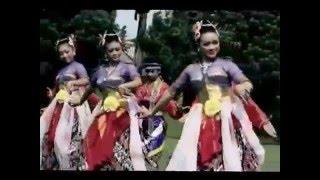 Gambar cover Dirgahayu Wonosobo - Nanda, Delia, Yadhy Surya
