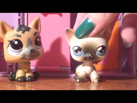LPS - The Cover Girls 3: TEENS #12 (Trancados!) thumbnail