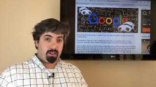 Google Core Ranking Update, Panda Rolls In, Bing's New Logo & Google Dance Returns
