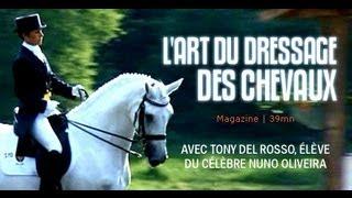 Equitation : L'art de dresser les chevaux