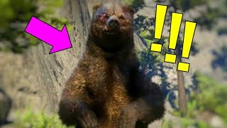 WE FINALLY FOUND THE BEAR in RED DEAD ONLINE,IT DIDN'T END WELL! RDR2 Multiplayer FUNNY MOMENTS