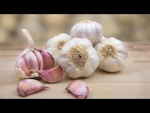 Amazing Health Benefits Of Eating Garlic Daily