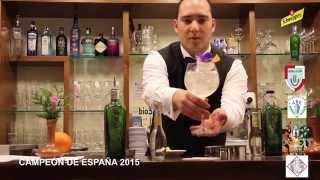 CampeÓn De EspaÑa 2015 De Gin Tonic