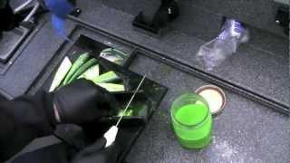 Salmon Fishing in Astoria - Leaky Waders Fishing
