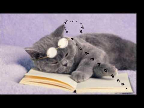 💤💤Asmr Book at Bedtime.💤💤 #2