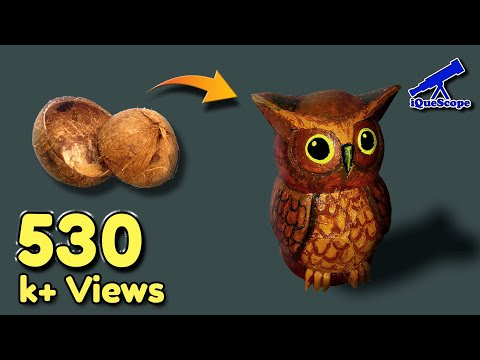 OWL | Coconut Shell Craft Artwork by Jahi Iqbal | iQueScope