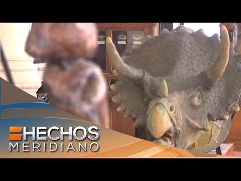 Pata de perro: Museo de Geología de la UNAM. Parte 2