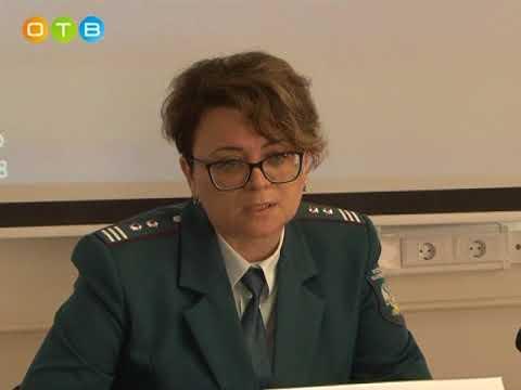 Пресс конференция в Одинцовской инспекции ФНС по земельному налогу
