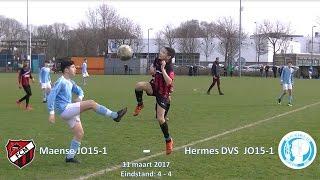 Samenvatting Maense JO15-1 - Hermes DVS JO15-1