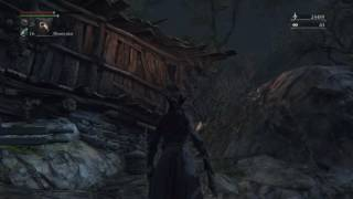 HENTAI MONSTERS IN BLOODBORNE!?