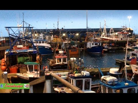 N Ireland Portavogie Fishing Fleet Harbour Night - Historic Landscape Scenery