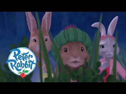 Peter Rabbit - The Dash in the Dark | Cartoons for Kids
