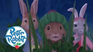peter-rabbit-the-dash-in-the-dark-cartoons-for-kids