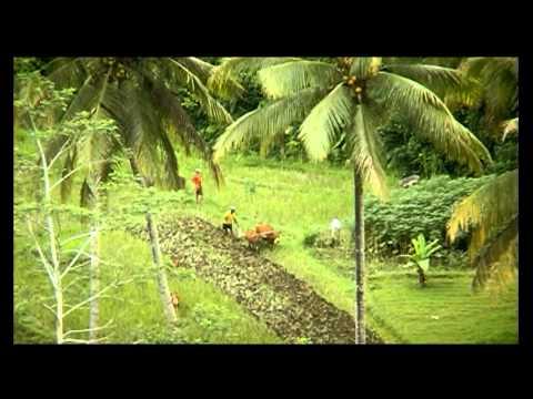 Bali espíritus y artesanos. (Completo)