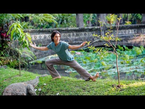 Hatha Flow Class W. Darin | Sacred Paths Yoga  (1hr 15 Min)