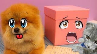 Тайная посылка для волшебных питомцев на 8 марта. Кот Макс и собака Алиса удивлены