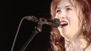 お疲れ様です。(_ _) 現在不注意により両手を痛めたので力いっぱい歌わ...