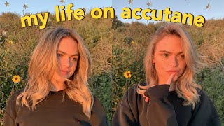 a day in the life on accutane + updated skincare r...