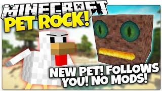 Minecraft | MY NEW BOULDER SIDEKICK! | Pet Rock in Minecraft (Minecraft Vanilla Mod)