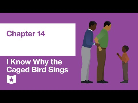 i-know-why-the-caged-bird-sings-by-maya-angelou-|-chapter-14