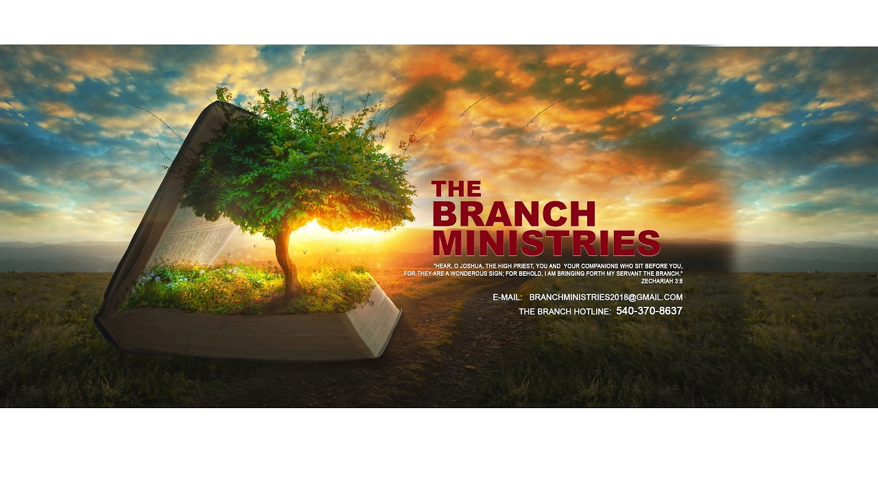 The Branch Ministries Fundraiser Event Nov. 4th
