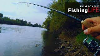 Рибалка на нових місцях