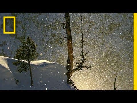 Diamond Dust | America's National Parks