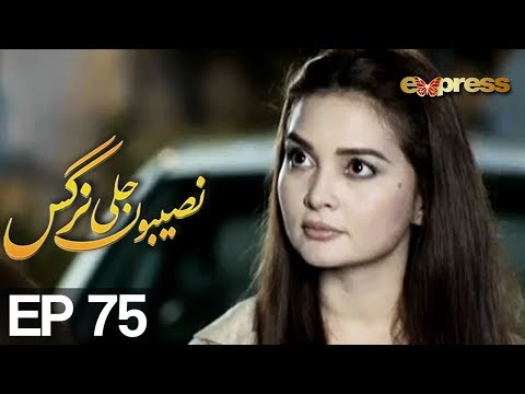 Naseebon Jali Nargis - Episode 75 - Express Entertainment