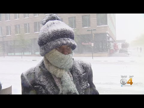 'That Time Of Year Again': Snow Falls Across Colorado