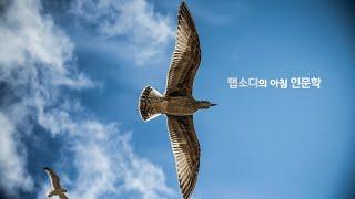 EP 14. 생각에 날개를 달자 | 아침 인문학