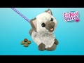 Download Video FurReal Friends Kami, My Poopin' Kitty from Hasbro MP4,  Mp3,  Flv, 3GP & WebM gratis