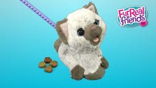 FurReal Friends Kami, My Poopin' Kitty from Hasbro