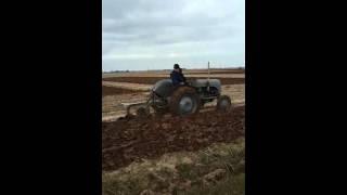 Ferguson's ploughing wragg marsh lincolnshire