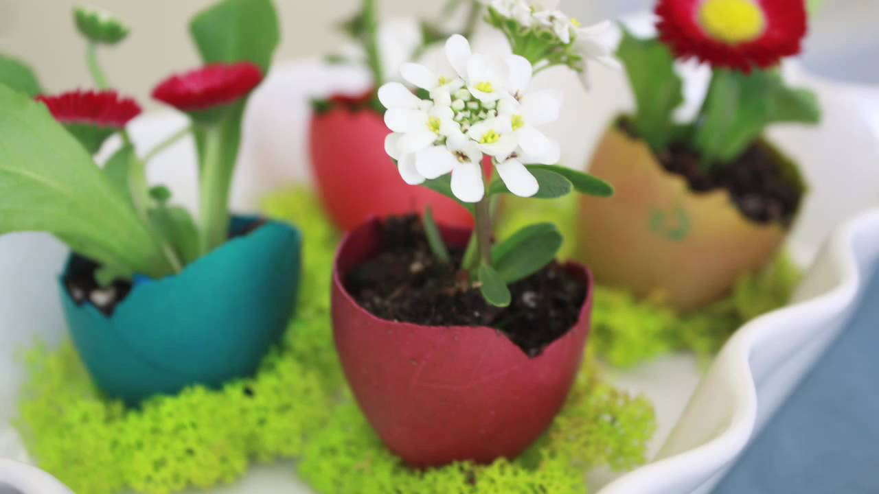 Egg shell flower pot youtube for Flower pot making with waste material