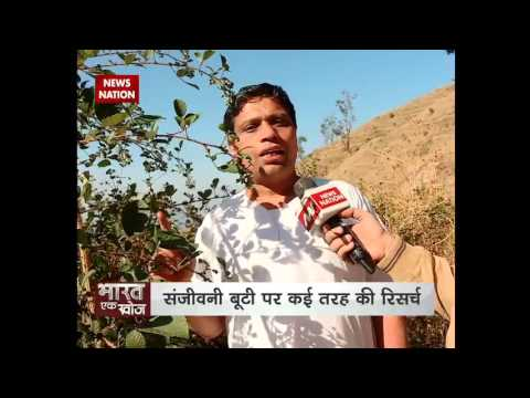 Bharat Ek Khoj: Acharya Balkrishna searches Sanjeevani(Plant) with News Nation
