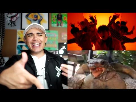 SF9 - ROAR MV Reaction