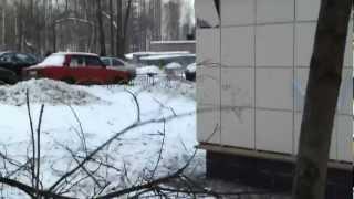 Вырубка деревьев(, 2012-03-31T10:44:34.000Z)