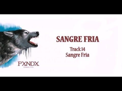 Sangre Fría - Panda (Letra) HD
