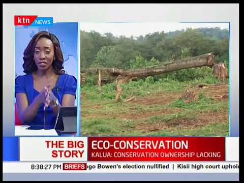 The Big Story: Eco-conservation