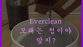 [Everclean] 에버크린 고양이 화장실 모래