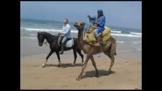 Camel Riding In Agadir - Ranch Amodoucheval