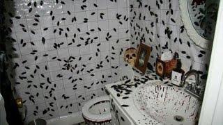 【閲覧注意】このお風呂で24時間過ごせたら75億円!!あなたは過ごせますか?人間とゴキブリの関係に世界が震えた。驚愕 thumbnail