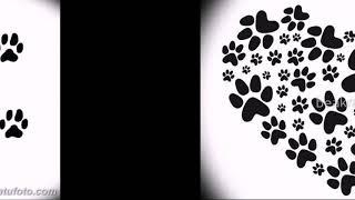 Эскизы тату кошачьи следы - коллекция оригинальных рисунков для тату следы кошки