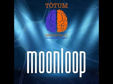 Moonloop live at Tótum Revolútum Fest 2018
