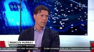 Virusattacken - en massiv kampanj för att få maximal utdelning - Nyheterna (TV4)