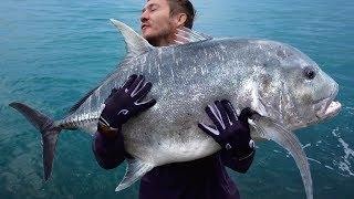 Video Morningtide Fishing goes Island Hopping to Unfished Ledges for Big GT   Washed Up Day 2 download MP3, 3GP, MP4, WEBM, AVI, FLV November 2017
